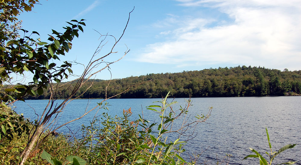 Catskill mountains lakefront and waterfront properties for Lake front properties