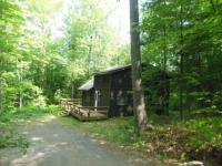 Cabin in  Woodland Valley